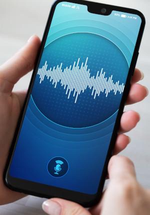 Voice recognition SCENTS